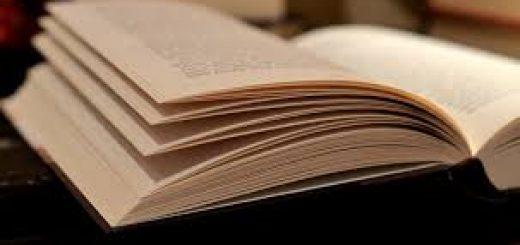 Экстремистская литература обнаружена на границе
