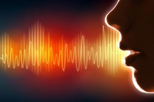 Вид экспертизы ― психолого-лингвистическое исследование