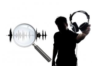 Фоноскопическая экспертиза голоса человека