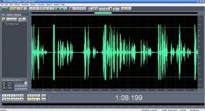 Экспертиза аудио в Москве при коррупционных делах