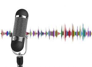 Проведение экспертизы аудиозаписи